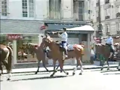 Caballos In Paris